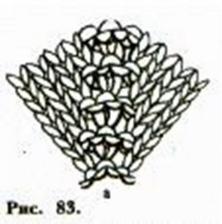 Схема вязания линии реглана