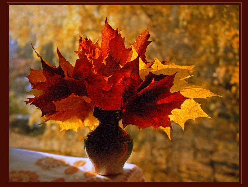 Осенние листья букет фото
