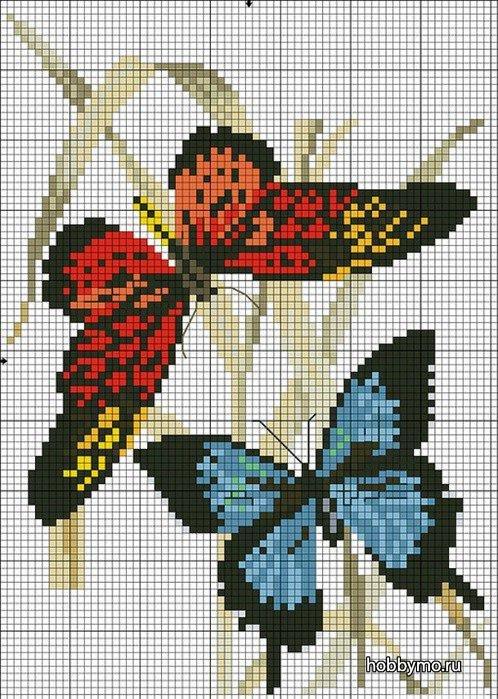 Приметы вышивка бабочки