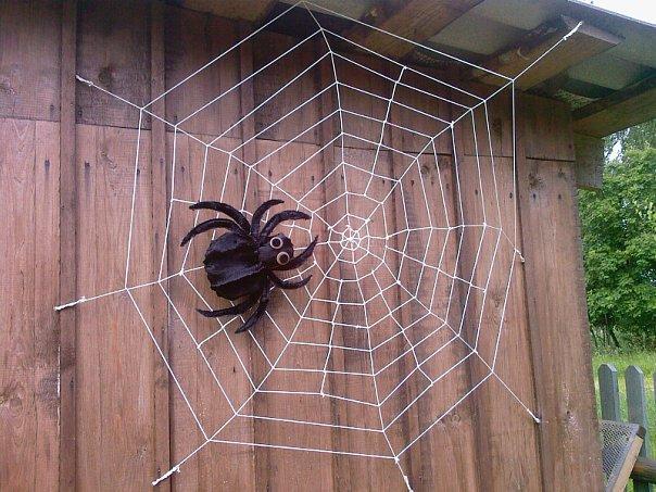 Украшения своими руками пауки