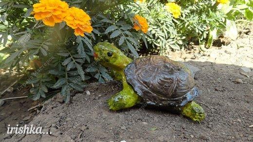 Черепаха из соленого теста: мастер класс с фото