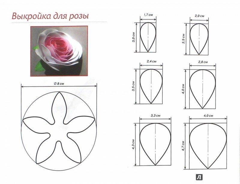 Огромный цветок своими руками: мастер класс из бумаги