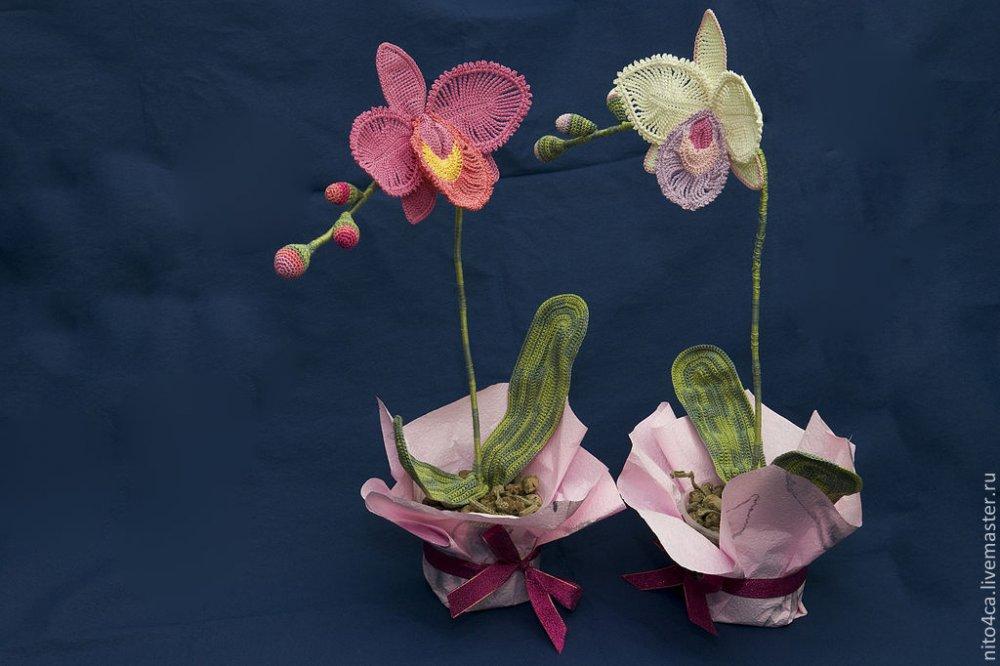 Орхидеи крючком со схемами и описанием