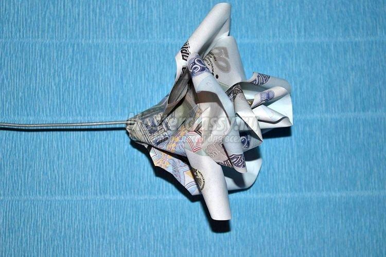 1437163001_1392901190_12_750x500 Цветы из денег пошагово своими руками (фото)