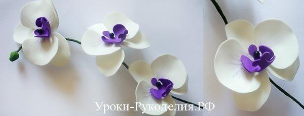 1464349298_275_0 Мастер класс: орхидея ангулоя из фоамирана