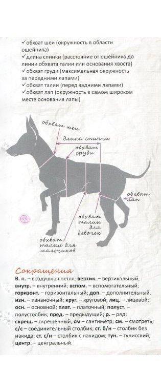 1467208636_1425409178_kak_snyat_merki_u_sobaki_dlya_vikroiki Одежда для Йорков: шьем и вяжем костюмчики для собак своими руками