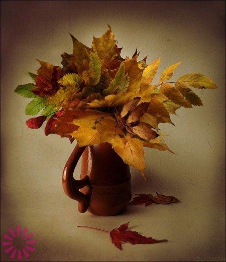 1475168375_0924e9bbf82a3d9b0611076c816a8248 Цветы и розы из кленовых листьев своими руками пошагово. Осенние поделки из кленовых листьев – букеты с розами и цветами: мастер класс