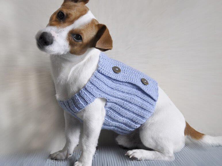 1480010641_kak-svjazat-odezhdu Вяжем одежду для собак: делаем крючком своими руками