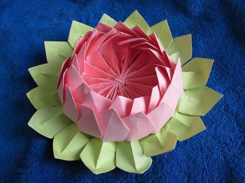 1482786027_kuvshinka1_00 Объемная водяная лилия из бумаги для детей и цветы в той же технике своими руками. Как сделать своими руками кувшинки из бумаги