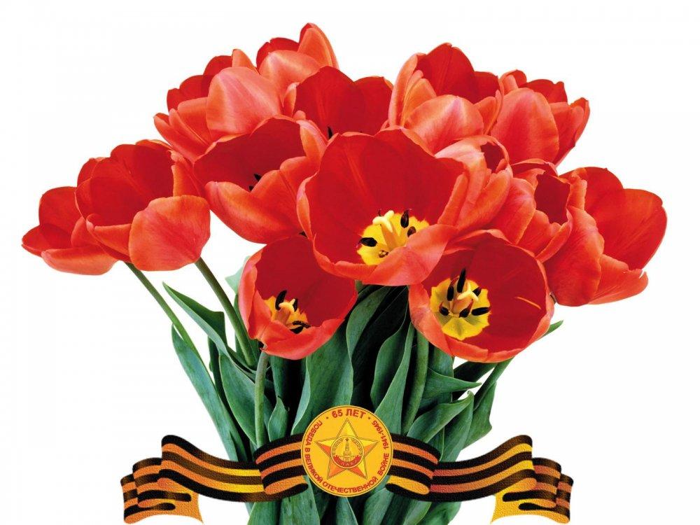 Годиком мальчику, картинки на 9 мая с цветами