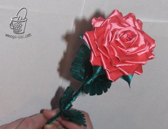 1494616546_getimage Как сделать розу из атласной ленты?